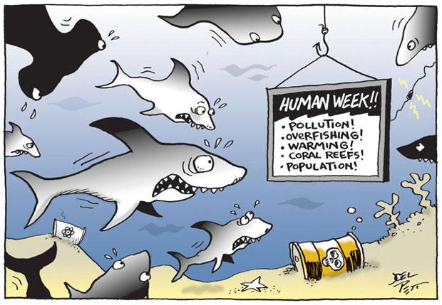 Environmental Cartoons By Joel Pett Climate Action Reserve